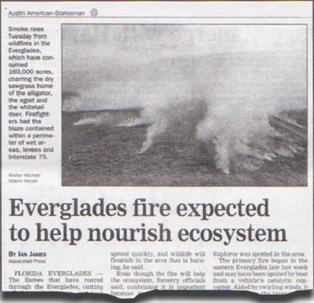 Everglades fire expected to help nourish ecosystem