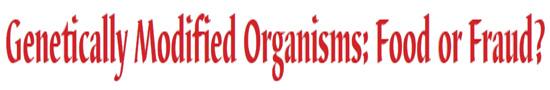 Genetically Modified Organisms: Food or Fraud?